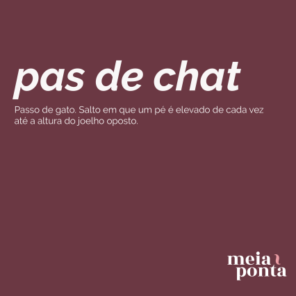 mp-dicionario-de-ballet-pas-de-chat