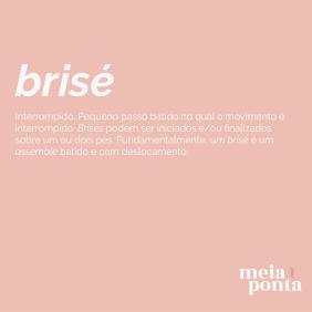 mp-dicionario-de-ballet-brise